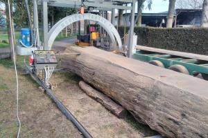 Tartak Mobilny - usługowe cięcie drewna u klienta