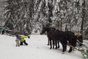 Kuligi Zimowe Wisła - Jeździmy na saniach :)